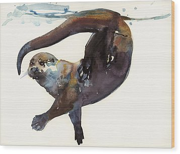 Otter Study II  Wood Print by Mark Adlington