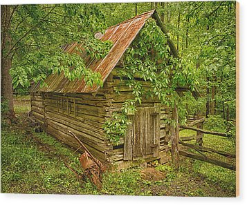 Out Back Wood Print by Priscilla Burgers