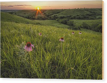 Out In The Flint Hills Wood Print by Scott Bean