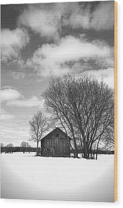 Out In The Sticks Wood Print by Thomas Young