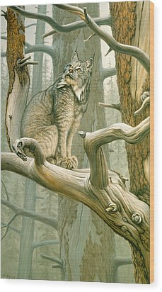 Out Of Reach - Lynx Wood Print by Paul Krapf
