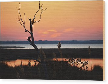 Wood Print featuring the photograph Ocean City Sunset Out On A Limb by Bill Swartwout