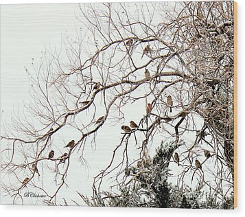 Wood Print featuring the photograph Out On A Limb First Snow by Barbara Chichester