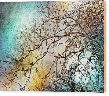 Out On A Limb In Jewel Tones Wood Print by Barbara Chichester
