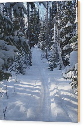 Wood Print featuring the photograph Out On The Trail by Sandra Updyke