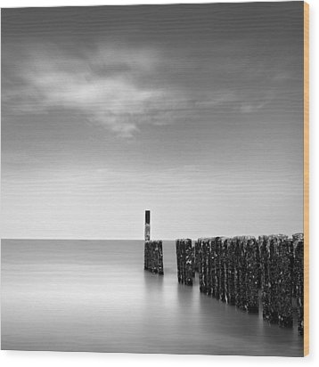 Out To Sea Wood Print by Dave Bowman