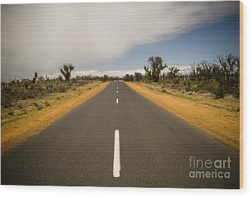 Outback Road Wood Print by Tim Hester