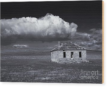 Outback Ruin Wood Print by Mike  Dawson