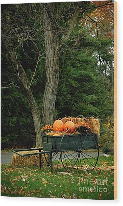 Outdoor Fall Halloween Decorations Wood Print by Amy Cicconi