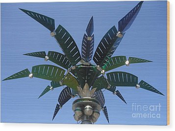 Outer Space Palm Wood Print by Ann Johndro-Collins