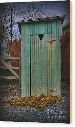 Outhouse - 6 Wood Print by Paul Ward