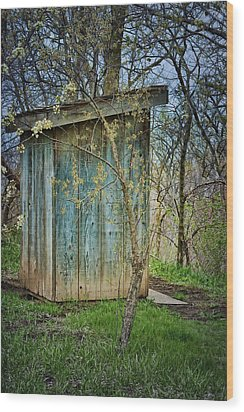Outhouse In Spring Wood Print