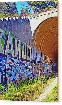 Outside The Abandoned Train Tunnel South Of The Old Train Roundhouse At Bayshore Near San Francisco  Wood Print by Jim Fitzpatrick