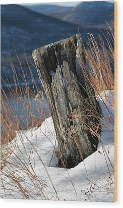 Over The Hudson  Wood Print by JC Findley