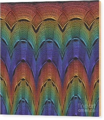 Over The Rainbow Multi Wood Print