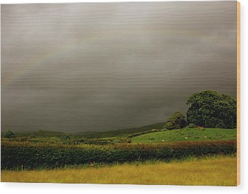 Over The Rainbow Wood Print by Theresa Selley