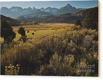 Wood Print featuring the photograph Overlook To Mt. Sneffles by Steven Reed