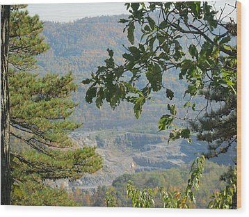 Overlooking An Old Quarry Wood Print by Sarah Manspile