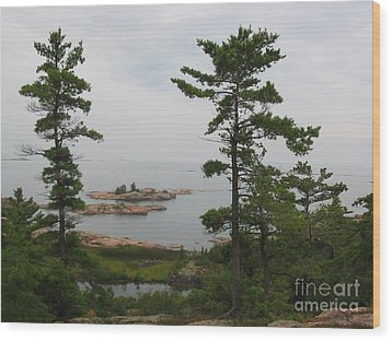 Wood Print featuring the photograph Overlooking Georgian Bay by Nina Silver
