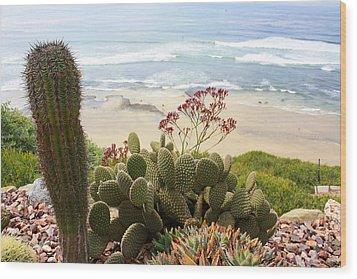 Overlooking San Elijo Beach Wood Print