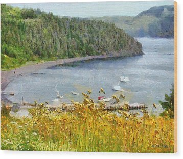 Overlooking The Harbor Wood Print by Jeffrey Kolker