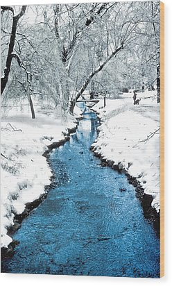 Overnight Snow In Edgemont Park Wood Print by Kellice Swaggerty