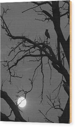 Owl By Night Wood Print