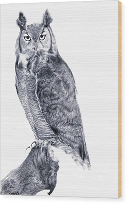 Owl Wood Print by Lucy D