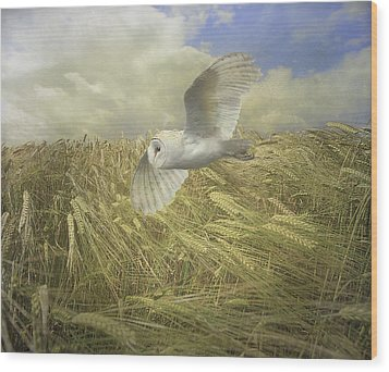 Owl On The Prowl Wood Print by Roy  McPeak