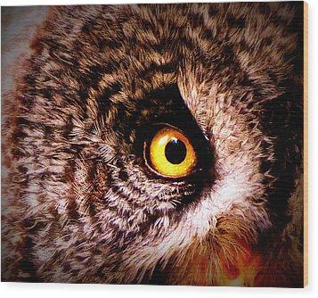 Owl's Eye Wood Print by Ramona Johnston