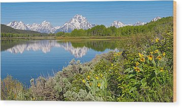 Wood Print featuring the photograph Oxbow Bend Wildflowers In Spring by Aaron Spong