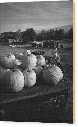 Oxford Pumpkins Bw Wood Print