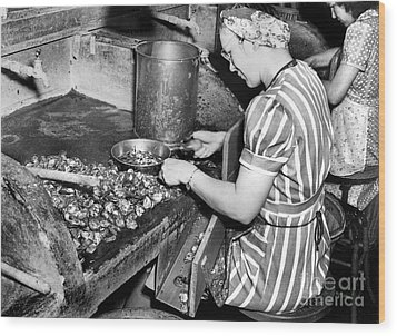 Wood Print featuring the photograph Oyster Industry Shuckers 1948 by Merle Junk