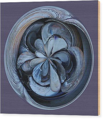Oyster Shell Orb Wood Print by Paulette Thomas