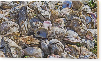 Oysters 02 Wood Print