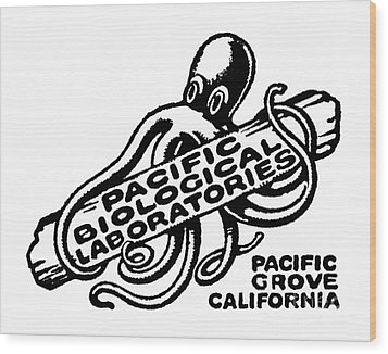 Pacific Biological Laboratories Of Pacific Grove Circa 1930 Wood Print