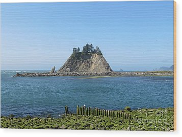 Pacific Coast At La Push Wood Print