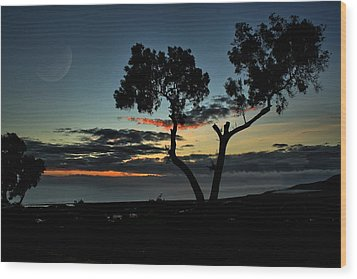 Pacific Evening Wood Print by Michael Gordon