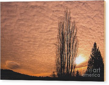 Pacific Northwest Winter's Sky Wood Print by MaryJane Armstrong