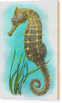 Pacific Seahorse Wood Print by Roger Hall