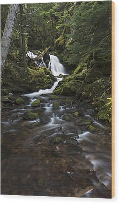 Packer Falls #3 Wood Print