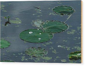 Pad Wood Print