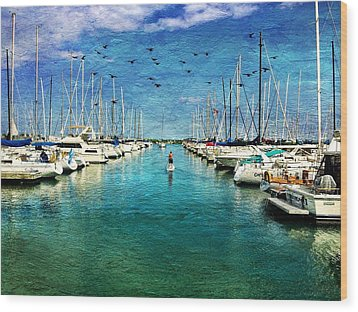 Paddle Boarder  In The Harbor Wood Print by Eleanor Abramson
