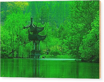 Pagoda On West Lake Wood Print by Larry Moloney