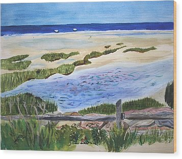 Paines Creeek Is A Wonderful Beach On Cape Cod Bay In The Town Of Brewster Ma. Wood Print by Donna Walsh