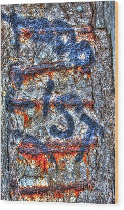Paint And Rust 25 Wood Print by Jim Wright