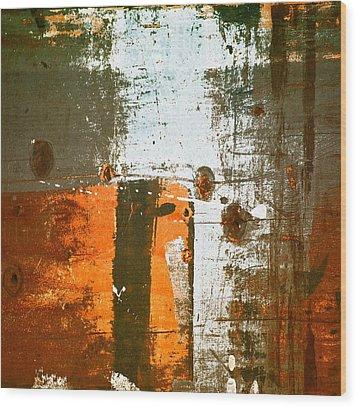 Paint Bi Color 3 Wood Print