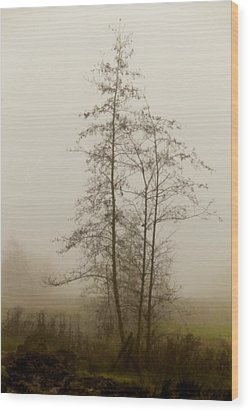 Painted By Weather Wood Print by Odd Jeppesen