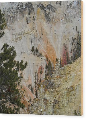 Painted Canyon At Lower Falls Wood Print by Michele Myers