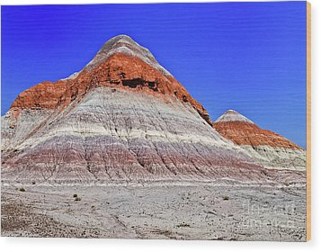 Wood Print featuring the photograph Painted Desert National Park by Bob and Nadine Johnston